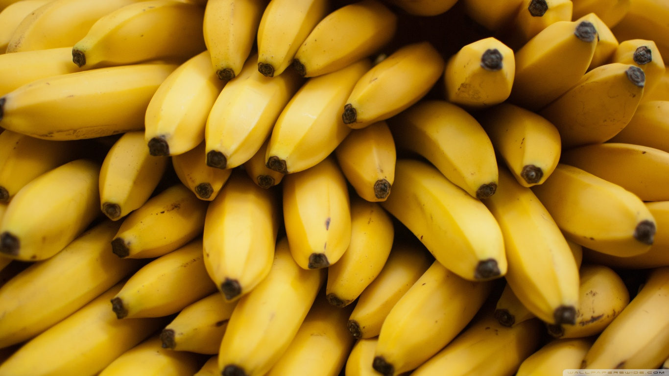 bananas-wallpaper-1366x768